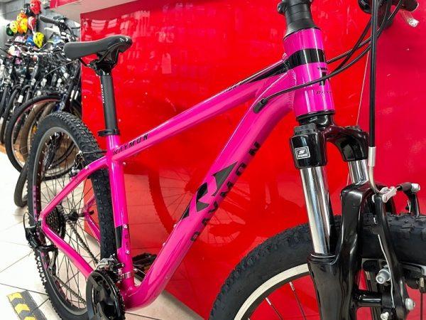 """Bici Raymon NineRay 1.0 29"""" donna. Bicicletta MTB Mountain Bike Verona"""